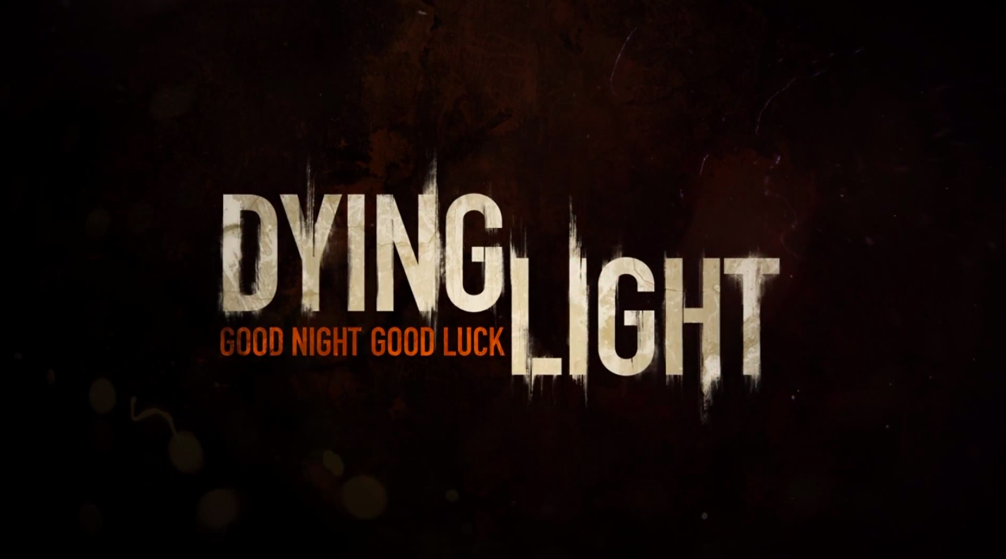 how to connect in lan in dying light
