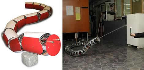 Robotorm som brandsläckare