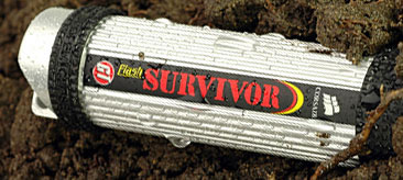 Flash Survivor