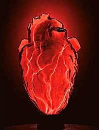 Hjärtlampa