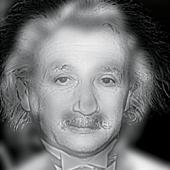 Marilyn Einstein