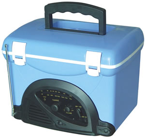 Mini Cooler With Radio
