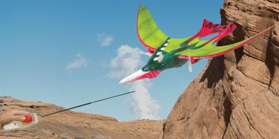 R/C Pteranodon