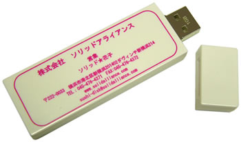 USB Key Business Card