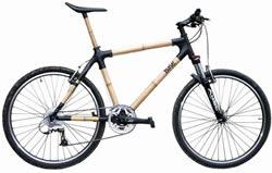 Bambucykel