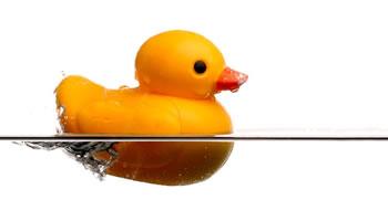 Duckling av Heinz Baumann
