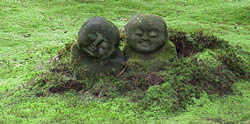 Japansk trädgårdskonst