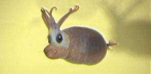 Piglet squid